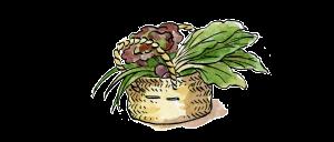 icono-cesta1