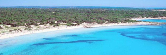 Platja d'es Trenc en Mallorca