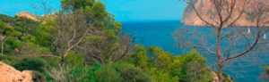 Ofertas de larga estancia en Mallorca